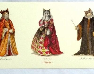Cat Print Dottore