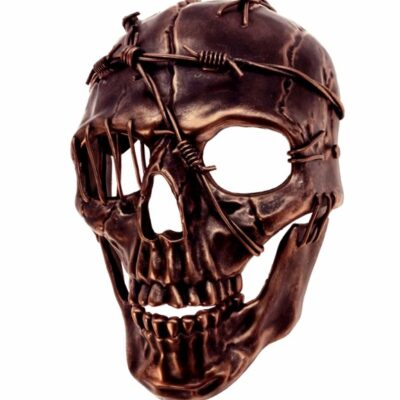Pirate Skull Mask Copper Barbed